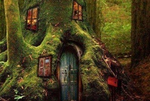 Treehouses: Real and Imagined