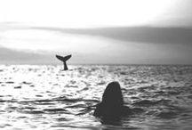 ~the sea~