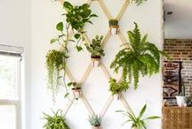 DIY For Your Home