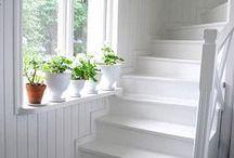 Stairways / by Catherine Carey
