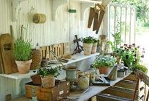Garden Sheds and Greenhouses  / by Catherine Carey