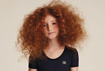 If you've got it, flaunt it / Hair,big beautiful hair / by Catherine Carey