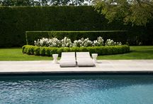 Pools and Landscaping / by Lacie Pipes