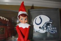 Elf on the Shelf / by Laura Pease