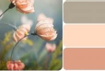 Loveme Some Color / by Belle'Ham Wedding & Events