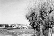 Elizak, ermitak - Iglesias, ermitas / by Getxo iruditan - Imágenes de Getxo