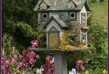 Even a BIRD needs a HOUSE / by Sherri Frazier