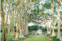 KJP Couples | Green Space Engagements / Engagement sessions in beautiful, natural, green locations.