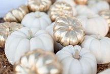 Fall Wedding Inspiration / Fall and Autumn Wedding Inspiration