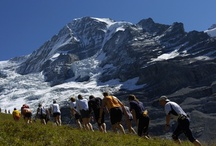 Mont Blanc Ultramarathon / Inspiration for John Pyle / by Pic War