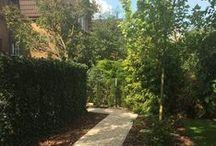 Nasze realizacje - ogród na poznańskiej Wildzie / Ogród na poznańskiej Wildzie, którego bardzo ciekawym elementem są Zielone Ekrany, które otaczają taras i stwarzają intymne wnętrze w ogrodzie;)