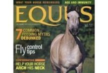 Horse Magazines / #Horse #magazines that are sure to answer questions, give helpful tips, and make you wish you subscribed sooner.