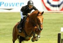 English Riding / English riding pictures, tips, tack and more.
