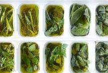 kitchen 101 / I have heard of use ice cube trays to store all kinds of things.  Adding the olive oil to store fresh herbs, brilliant! / by Sandollar Sandy #allaboutKeepingSeniorsSafe