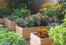Gardening Inspiration / Gardening Ideas from the interwebs that I totally dig!
