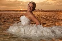 Weddings / Wedding & Portrait Photographer