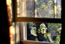 Early Mornings / Easy like Sunday Morning / by Julia Isslamow