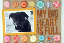 Scrapbooking / by Tammy Cooper