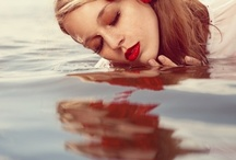 .:: Photographs ::.