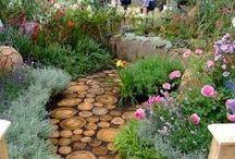 Gardening / by Lara Ellery