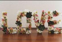 Amor / Love / Comunidad entorno a la palabra #AMOR, imágenes acerca de este #sentimiento, queremos aportar nuestro conocimiento acerca del maravilloso mundo que engloba la palabra amor a través de nuestros post!!! Enlázate al amor!!! www.twinshoes.es