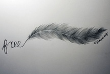 Feather! / by Joli Campbell