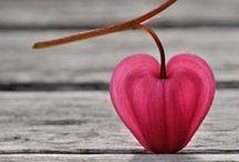 Corazón / Heart / El #corazón es el #símbolo universal del #amor. Aquí encontraréis todo tipo de #corazones, algunos de ellos realmente sorprendentes
