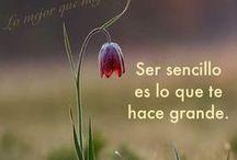 Pensamientos geniales / Frases que te llegan al #alma, que te hacen pensar, que motivan