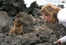 Galapagos Unbound / Darwin's paradise! All things Galapagos Islands - travel, wildlife, activities, and more.  / by ROW Adventures