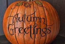 Autumn ~ The Pumpkin Patch