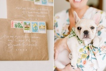 OUR Wedding Inspiration! / This is an inspiration board for our wedding next year!