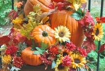 Seasonal--Fall / by Donna Underwood