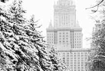Winter / by Shawn Baxter