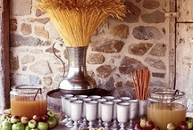 Thanksgiving / Celebrate Thanksgiving with beautiful designer touches / by Elizabeth Lamont