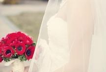 ✿⊱╮Poppy Flower Wedding Theme✿⊱╮