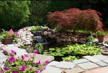 Design Ideas | Landscaping / Imaginative and interesting ideas for your next home project!