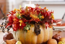 FALLing for THANKSGIVING / Everything warm and wonderful in fall through Thanksgiving!