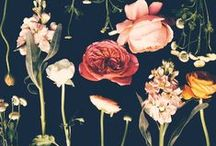 Black // Floral