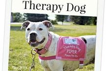 Therapy Dogs / Helping people cope