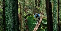 Mountain // Biking