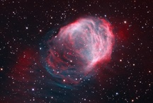 o mundo lá fora  / troco órgãos vitais pela chance de ir ao espaço, tratar aqui
