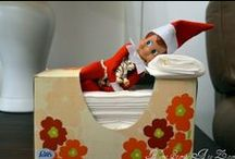 Elf on the Shelf!! / by Amy Turpin