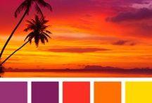 Bright colors / Яркие цвета