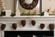 Home Garnish / All the little details that make a space cozy, functional and fun! / by Angie Guarino