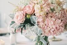 Weddings & Love / by Angie Guarino