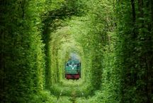 I Wanna Go There... / by Wanda McCants