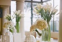 Venues and Floral
