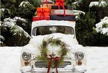 winter time / christmas