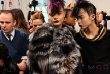 Fall 2013 Fashion Week / by MODTV