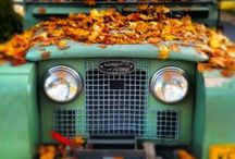 #LandRover Fall / These photos of #LandRover in the fall remind us of hot apple cider, warm scarves, and slow drives past fiery orange trees.